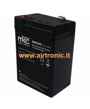 Batteria al Piombo 6V 4,5A