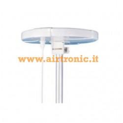 Antenna amplificata
